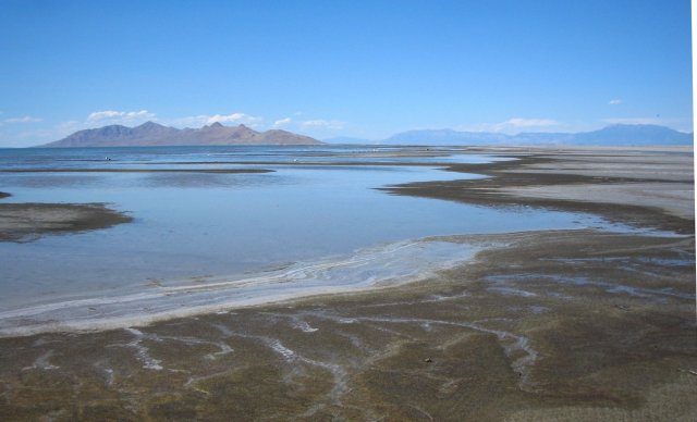 The Great Salt Lake. Photo from http://freshwatertuttle.wikispaces.com/NatalieDeadSea